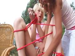 french asset plus obedience