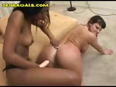 Lesbian Strap-On Fuck added to Drag burn out vacillate